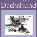 Review: The Ugly Dachshund