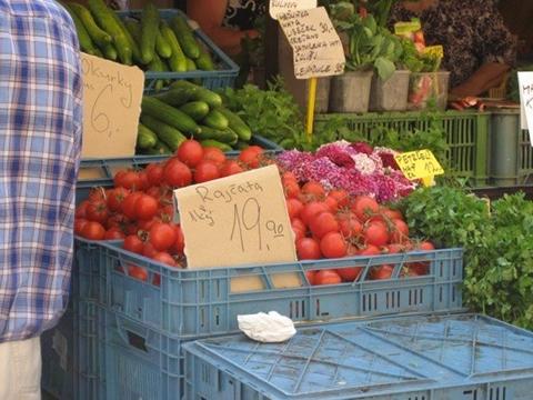 Tomatoes, cucumbers, cilantro