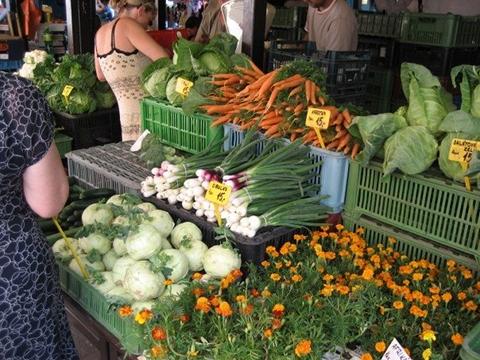 Carrots, lettuce