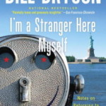 Review: I'm a Stranger Here Myself