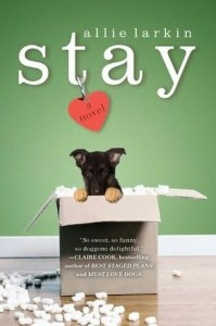 Stay, Allie Larkin