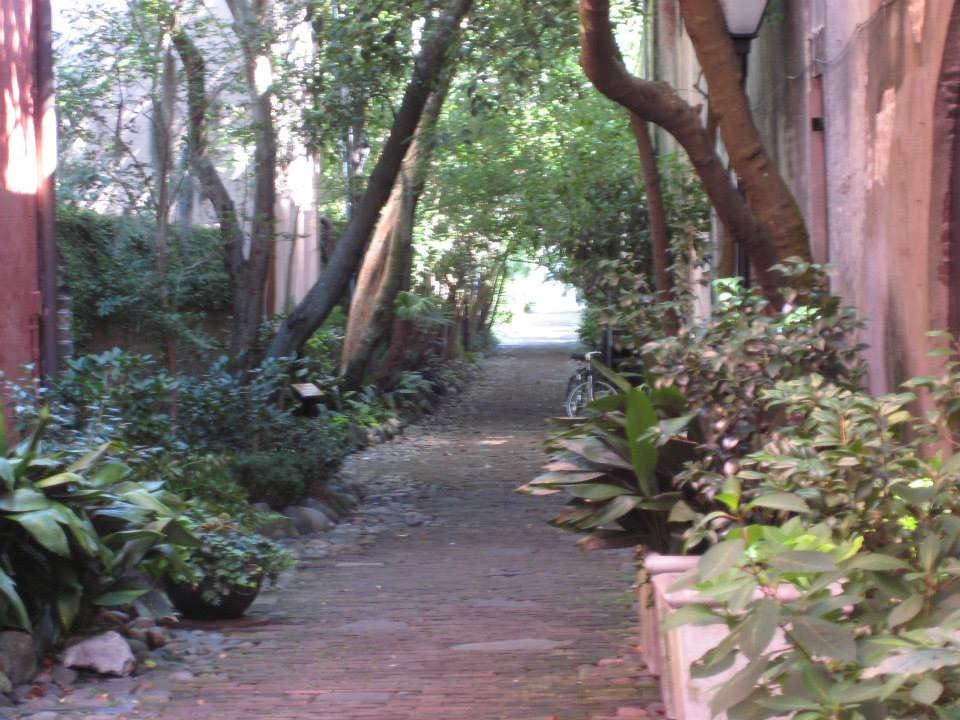 Photo of shady alley in South Carolina, with plants lining the walkway and a bicycle in the background.